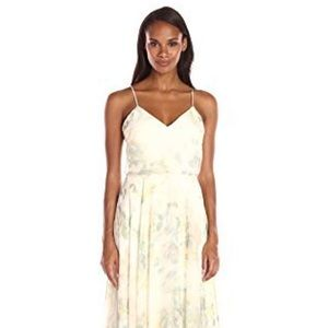 Jenny Yoo Inesse Floral Chiffon Dress